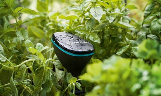 Gärtnern auf die smarte Art